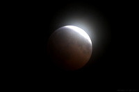 The Moon - a total lunar eclipse - total phase