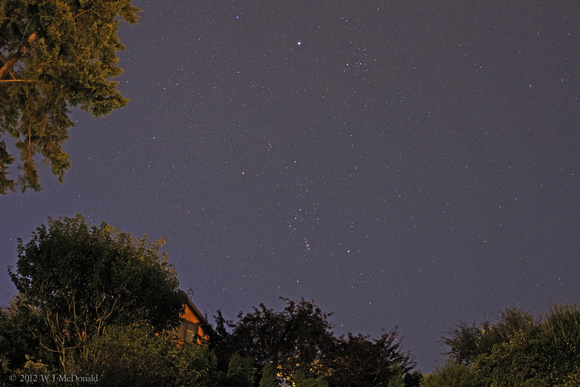 Orion in the Morning