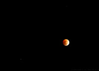 Lunar Eclipse - the Moon in conjuction with Saturn & Regulus