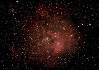 NGC7822 nebula in Cepheus