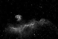 Seagull Nebula, IC2177 in Ha